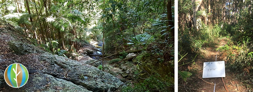 hinterland environmental impact